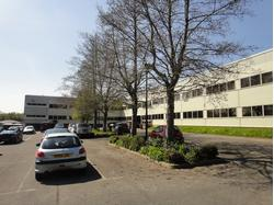 Modern Offices with Extensive Parking