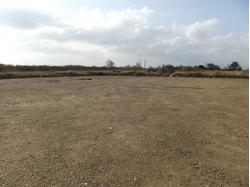 Yard 1, Thames Industrial Park