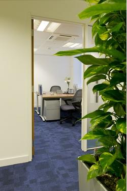 OFFICE SPACE in Mayfair  Available for Rent  - W1S - Office Space London - W1S