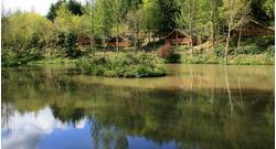 Bulworthy Forest Lodges, Bideford, EX39 4PU