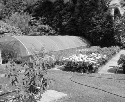 Reuthes Nursery